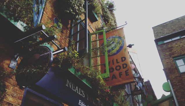 In a world of colours and good food: the Wild Food Cafe